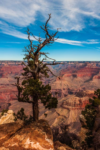 South Rim of Grand Canyon Nation Park, Arizona, USA